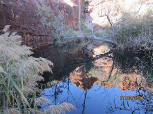 IMG_2351 Kathleen Springs Walk